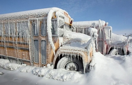 school-bus-snow